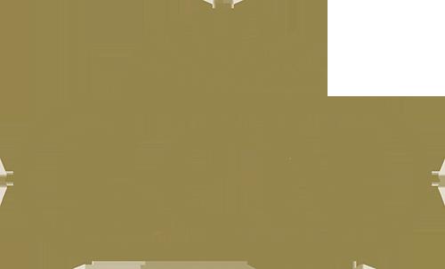 lcn_logo